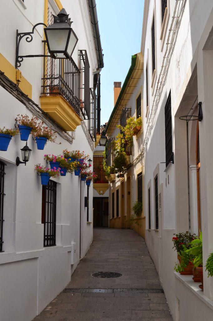 rue fleurie cordoue
